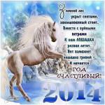 Новый 2014 год - год лошади