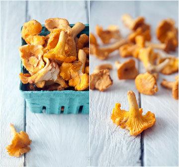 Особенно полезные лесные грибы - это лисички