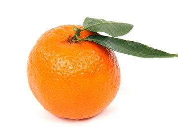 snyat-cedru-s-citrusovyx
