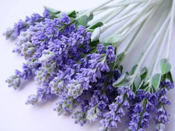 украсить съедобными цветами