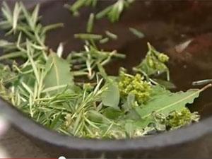 Травы для запеканки