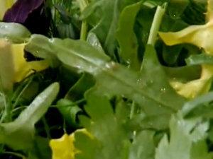 Смесь трав для салата