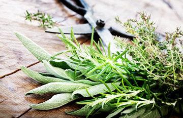 Ароматные травы для масла