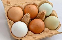 8 свежих куриных яиц