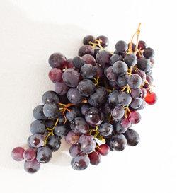 Виноград на веточке