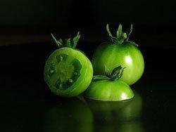 Зеленые помидоры содержат яд
