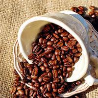 250-g-kofejnyx-zeren