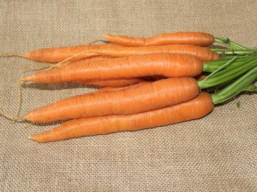 Очистить и мелко нарезать морковь