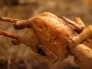 Куриный гарем 3