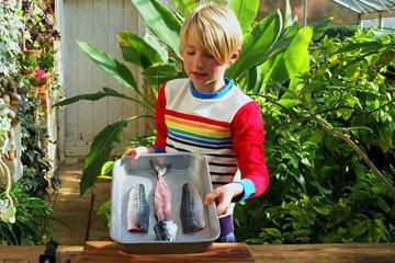 Бадди Оливер показывает, как сделать филе рыбы