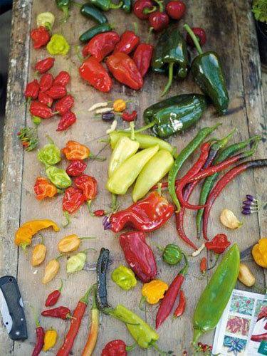 Овощи на гриле маринад чили
